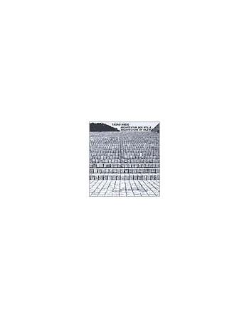Tadao Ando - Architektur...