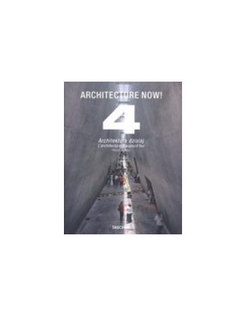 ARCHITECTURE NOW 4!...